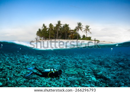 scuba diving diver below coconut island  bali lombok sulawesi indonesia underwater bali lombok - stock photo