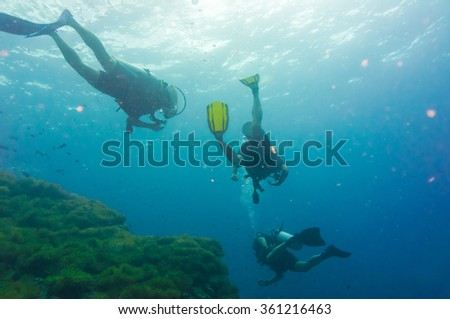 Scuba diving on coral reef in sea, Koh Tao, Thailand - stock photo