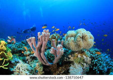 Scuba Diving over Coral Reef with Fish underwater in ocean - stock photo