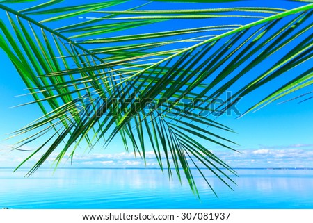 Sea Beach Background  - stock photo