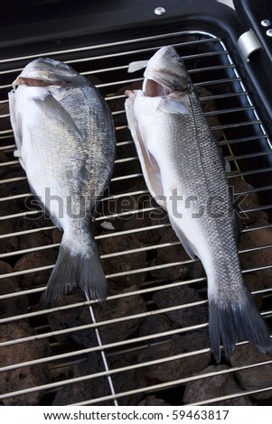 Sea bream and bass on the barbecue - stock photo