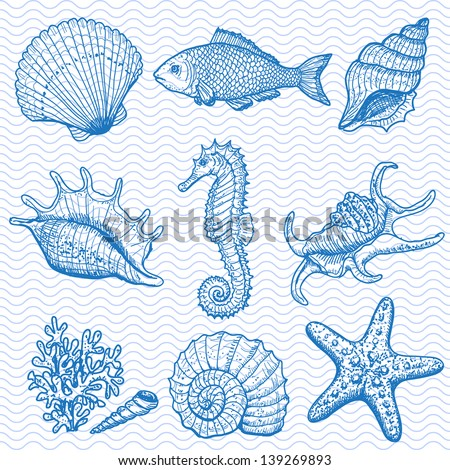 Sea collection. Original hand drawn illustration in vintage style. Raster version. Vector is also available in my gallery - stock photo