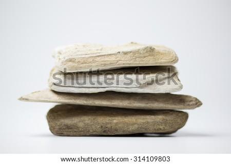 sea driftwood  - stock photo