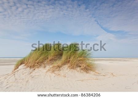 Sea dunes - stock photo