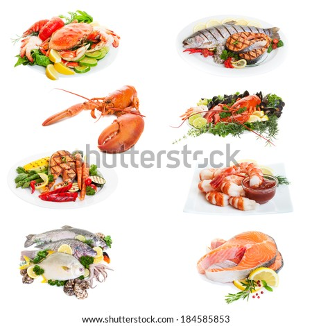 Sea food collage made from eight  photographs on white - stock photo