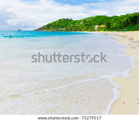 Sea Landscape Palms - stock photo