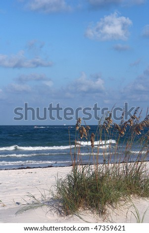 Sea oats and surf in Madeira Beach Florida on Florida's Gulf Coast. - stock photo