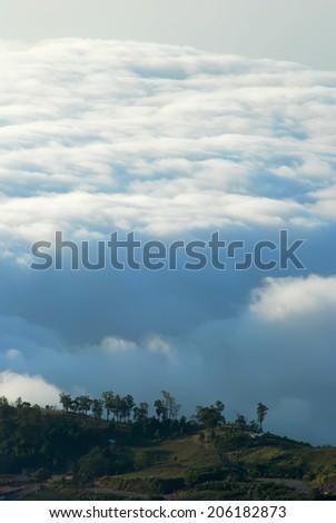 Sea of mist in Phu Thap Boek, Phetchabun Province, Thailand. - stock photo