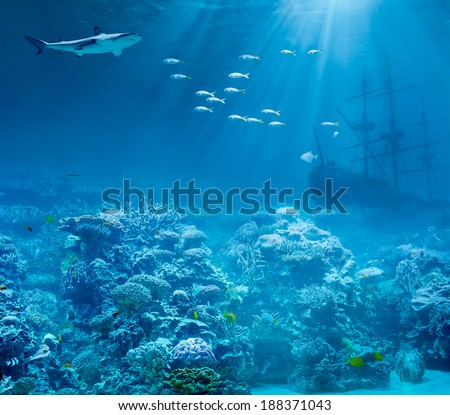 Sea or ocean underwater with shark and sunk treasures ship - stock photo