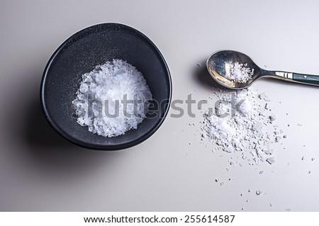 Sea Salt in salt bowl with spoon - stock photo