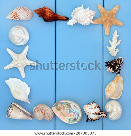 Sea shell collage over wooden blue background. - stock photo
