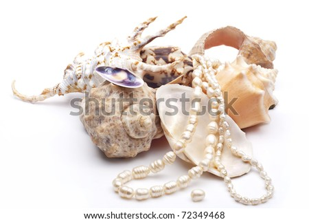 Sea shells arranged over white background with string of pearls - stock photo