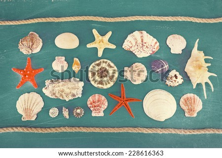 Sea souvenirs on color background - stock photo