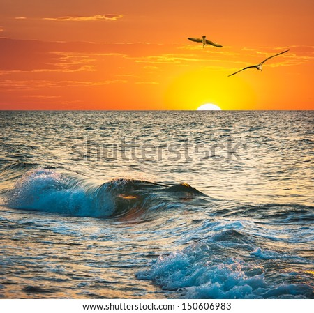 Sea sunset with seagulls. Ocean wave at sundown on the tropical beach. - stock photo