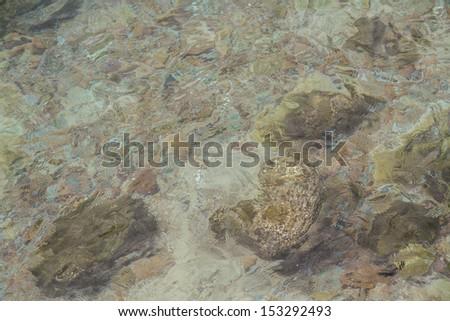 Sea-swept rocky shores, Larn Island, Pattaya. Chonburi. - stock photo