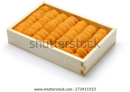 sea urchin roe, japanese sushi and sashimi ingredients - stock photo