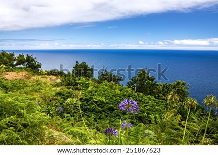 Sea view, tropical ocean beach, Funchal, Madeira, Portugal - stock photo