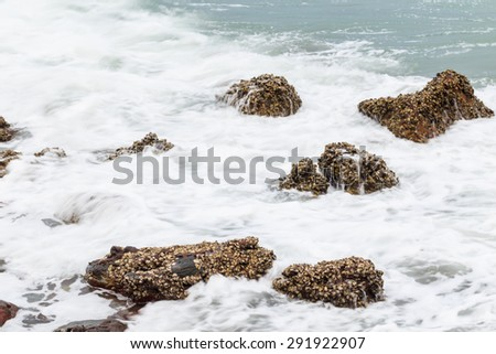 sea wave hit the rock on the shore nature background - stock photo