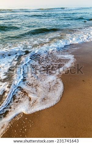 Sea waves in the white foam on the sandy beach. Dawn. - stock photo