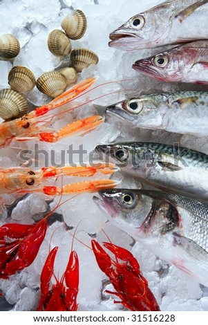 Seabass, mackerel, hake fish, nephrops, crabs and clams seafood - stock photo