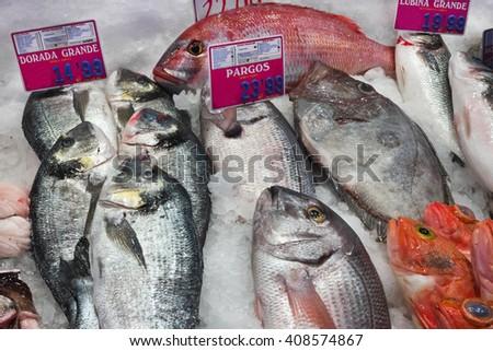 Seabream, Seabass fresh fish -  Mercado de Maravillas, Madrid. Spanish fresh seafood on ice at fishmonger counter    - stock photo