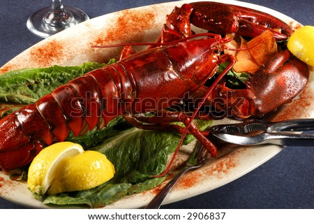 Seafood Lobster Dinner - stock photo