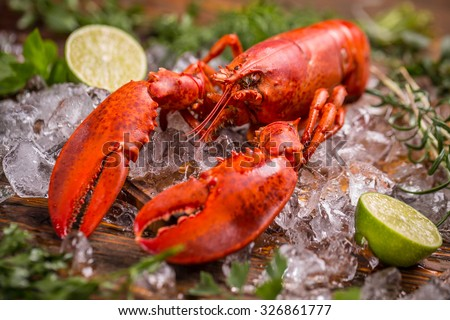 Seafood lobster on ice with lime - stock photo