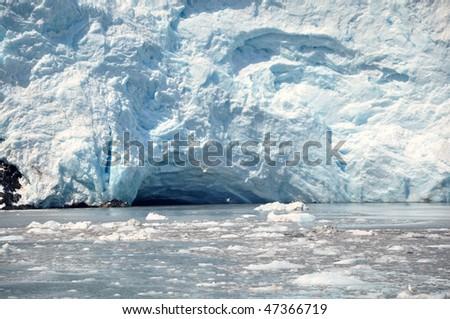 Seagull against glacier - stock photo