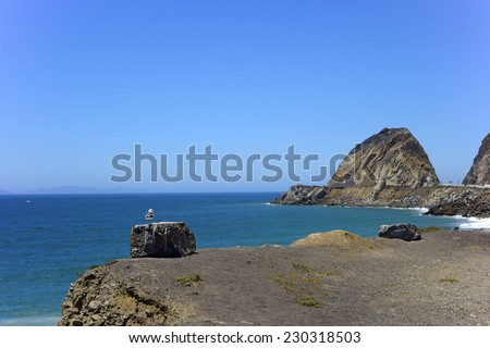 Seagull atop a boulder near cliffs and rocks of Point Mugu, Southern California - stock photo