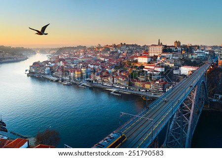 Seagull flying in the sky over Porto city, Portugal - stock photo