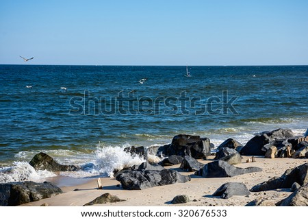 Seagulls and a windsurfer off in the distance from this shoreline view at Sandy Hook along the Jersey shore. - stock photo