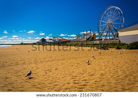 Seagulls and ferris wheel on the beach in Old Orchard Beach, Maine. - stock photo