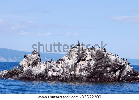Seagulls covering gull rock near homer alaska - stock photo