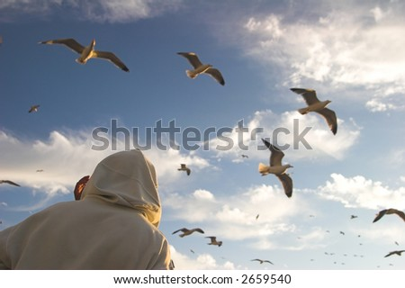 seagulls flying above a man - stock photo