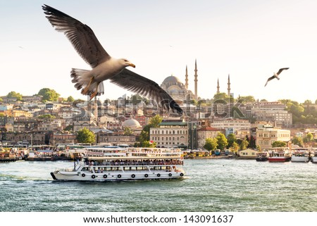 Seagulls flying on the Golden Horn in Istanbul, Turkey - stock photo