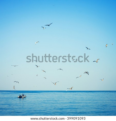 seagulls  followed by fishing boat - stock photo
