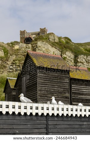 seagulls, net huts and cliffs, Hastings, foreshortening of seagulls and old net huts built in wood and painted black under the cliff  in historic village of Hastings, East Sussex   - stock photo