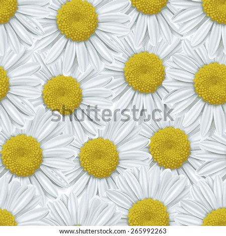 Seamless background with daisy flowers on white - stock photo