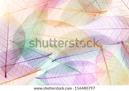 Seamless color leaves background - stock photo