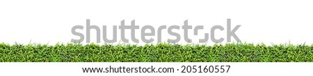 Seamless grass background  isolated on white - stock photo