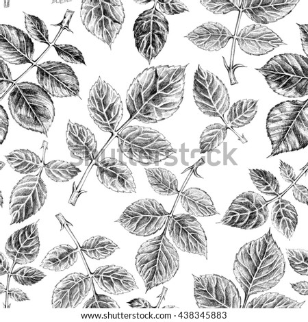 Seamless pattern with leaf, vintage roses leaves background. Hand drawn sketch  illustration on white background. - stock photo