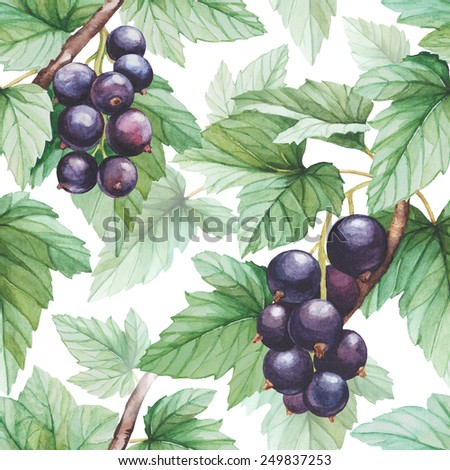 Seamless pattern with watercolor black currants illustration - stock photo