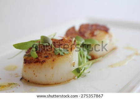 Seared scallops on a plate with micro greens - stock photo