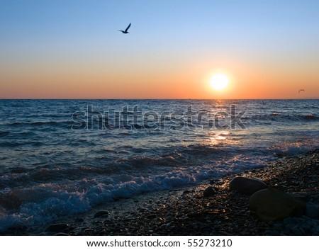 seas coast sunset landscape - stock photo