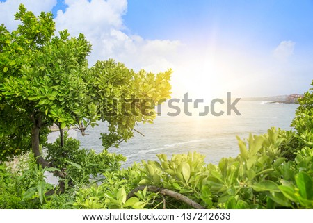 Seascape. Bright sun on a background of the sea through the green branches of trees. - stock photo