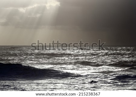 Seascape with commercial ship on the horizon and sunbeams - stock photo