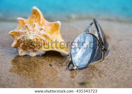 Seashell and sun glasses on sand of the beach in sunlight, background, close up - stock photo