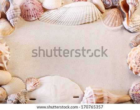 Seashell border surrounding smooth sand for copy space. Summertime background, frame or border. Shells are varieties that are indigenous to southwest Florida, USA and were found on Sanibel Island. - stock photo
