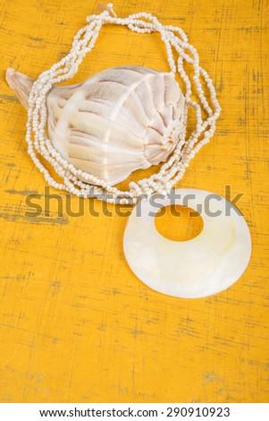 Seashell Necklace on Gold Background - stock photo