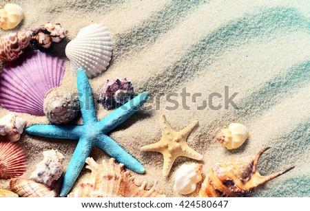 Seashells on a summer sandy beach. Sea shells. - stock photo